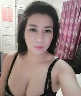 New Zealand Escorts-Fifi-asian-escorts-Private-Auckland-escorts-penrose-Escorts